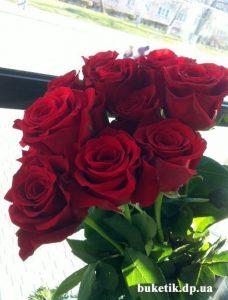 купить розы в днепре
